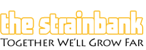 The Strainbank Blog