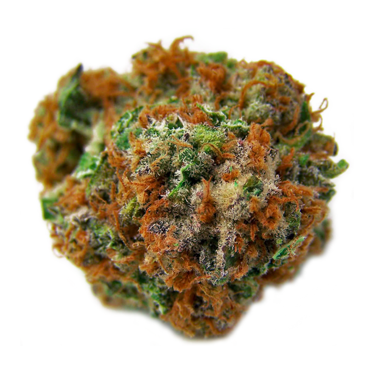 Colorado Kush: Buy Colorado Cannabis Seeds Online For Sale