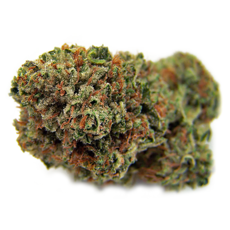 buy south carolina cannabis seeds online for sale